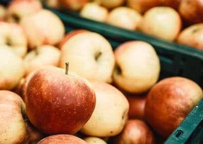 the-good-food_start-sortiment